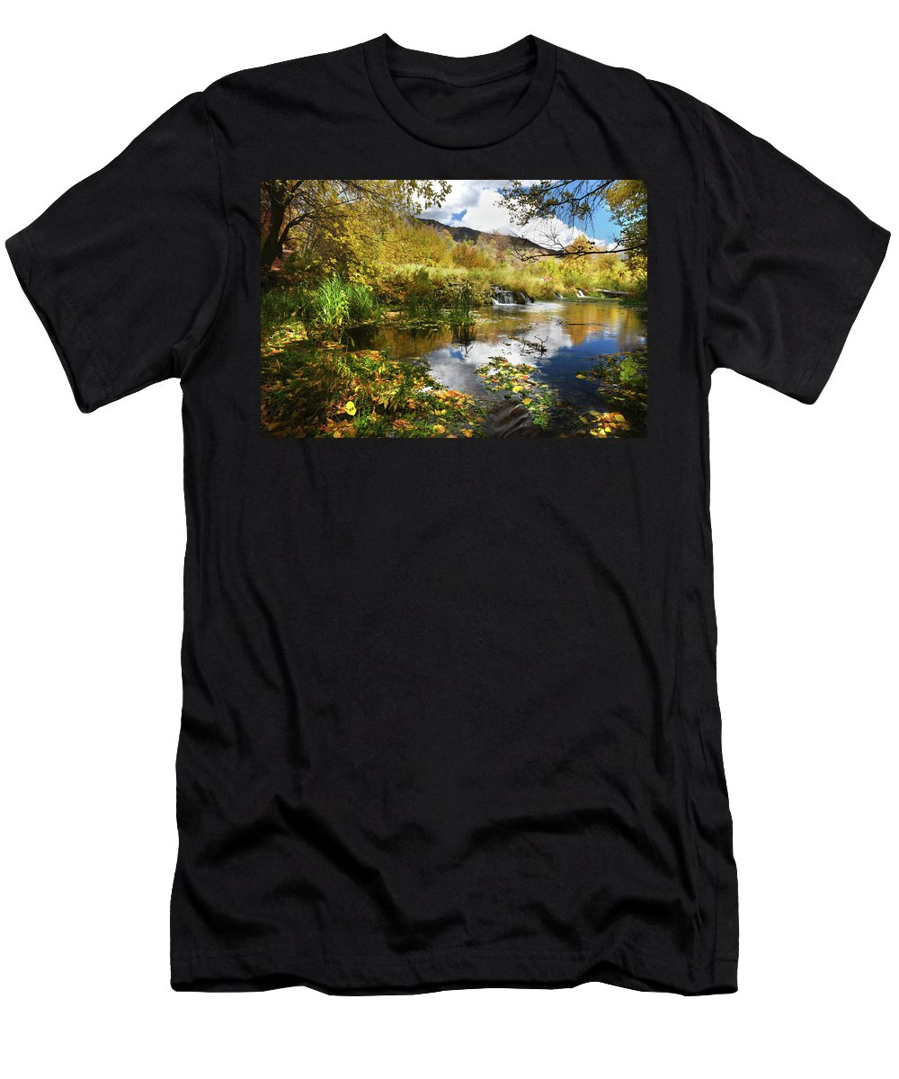 Cascad Springs Men's T-Shirt (Athletic Fit) featuring the photograph Cascade Springs Large Pool by Ron Brown Photography