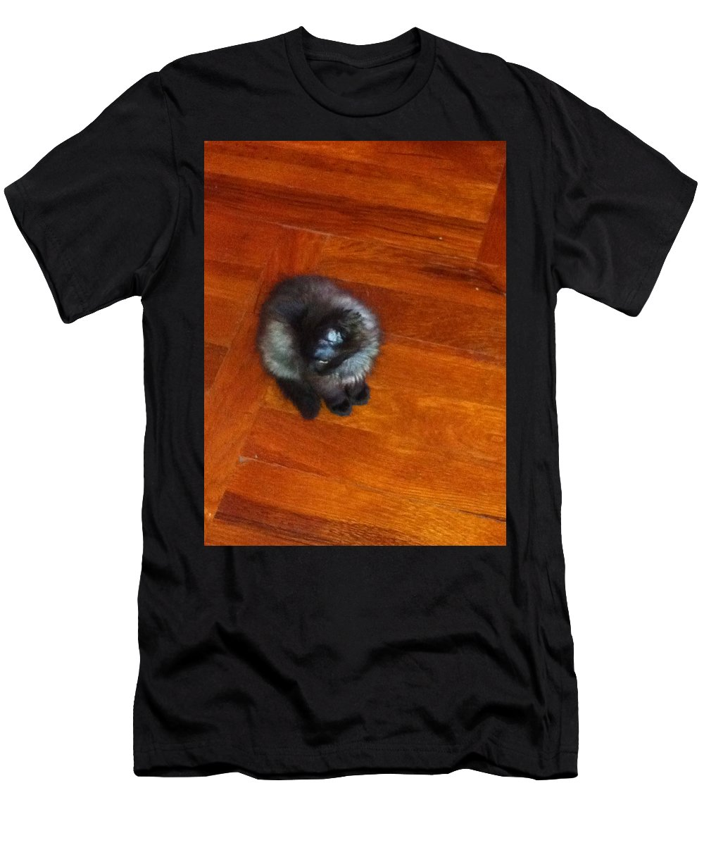 Men's T-Shirt (Athletic Fit) featuring the photograph Cat by Daniela Buciu