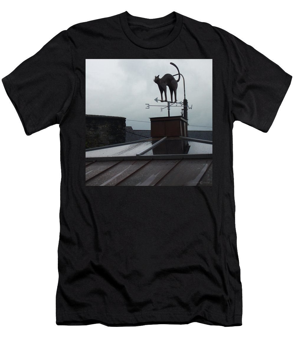 Cat Men's T-Shirt (Athletic Fit) featuring the photograph Cat On A Cool Tin Roof by Tim Nyberg