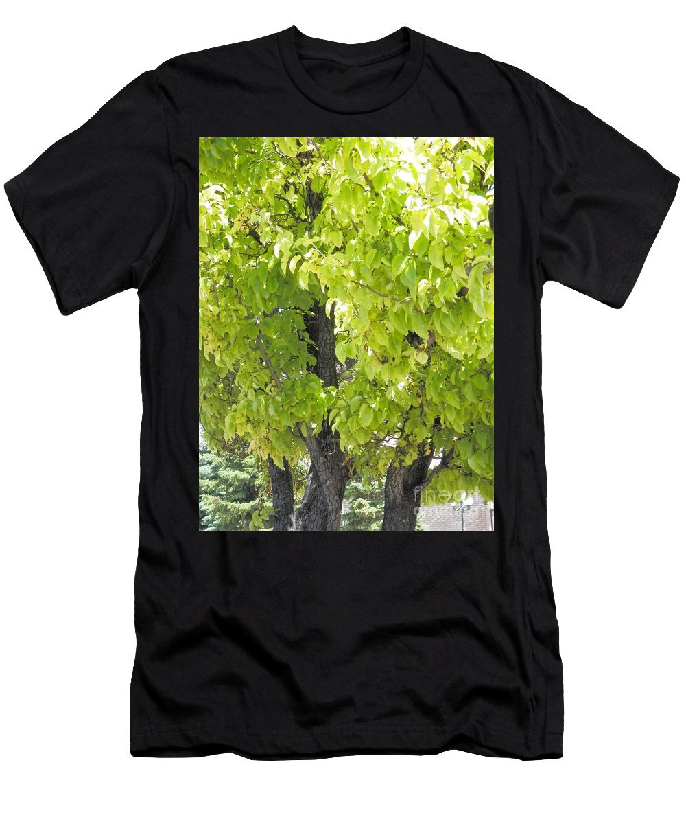 Cedar City Utah Men's T-Shirt (Athletic Fit) featuring the photograph Cedar City Welcome by L Cecka