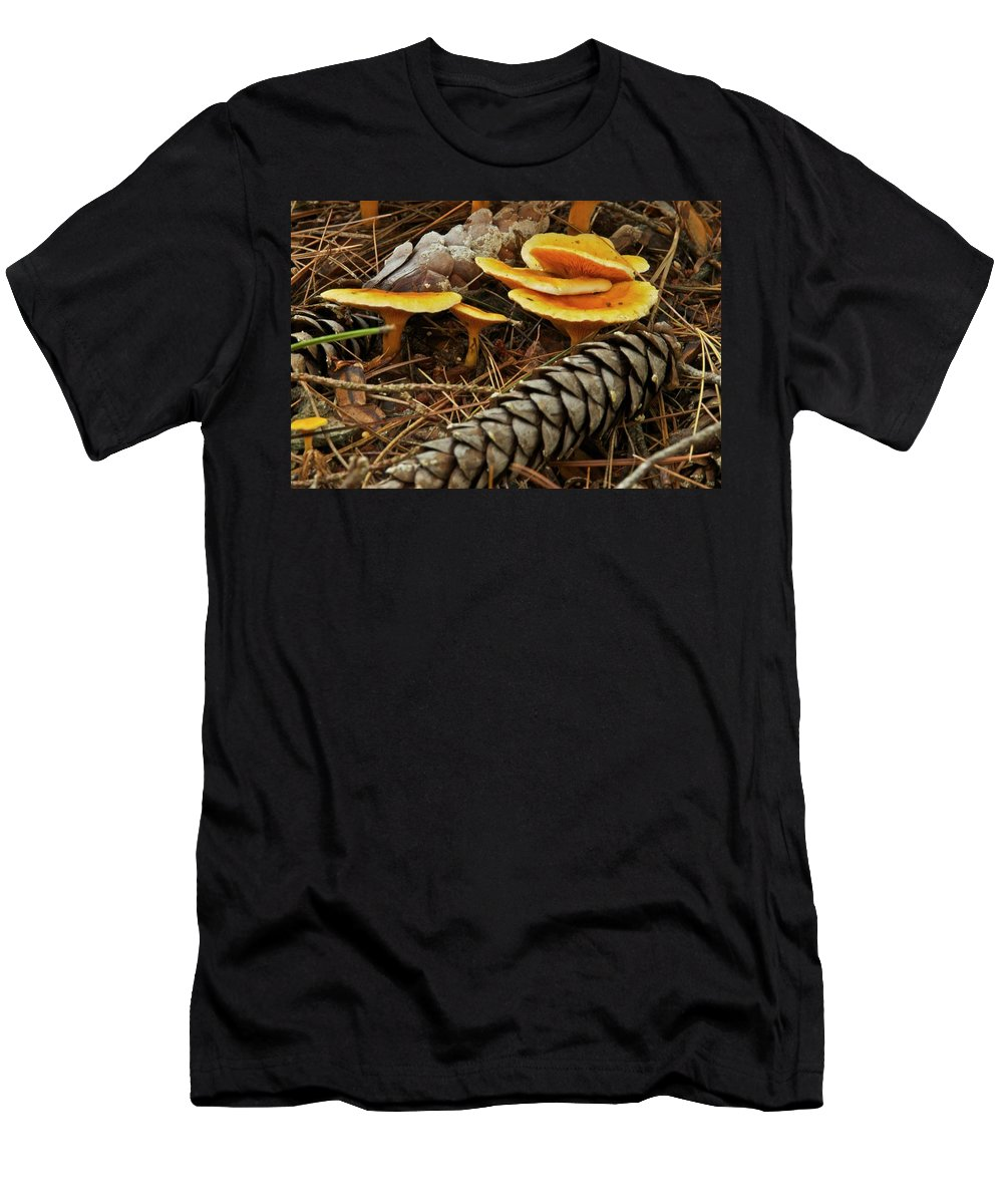 Chanterelle Mushroom Mushrooms Fungus Fungi Edible Pine Cones Pine Needles Forest Decay Nature Mgp Photography Michael Peychich Yellow Brown Michigan Autumn Men's T-Shirt (Athletic Fit) featuring the photograph Chanterell Mushrooms by Michael Peychich