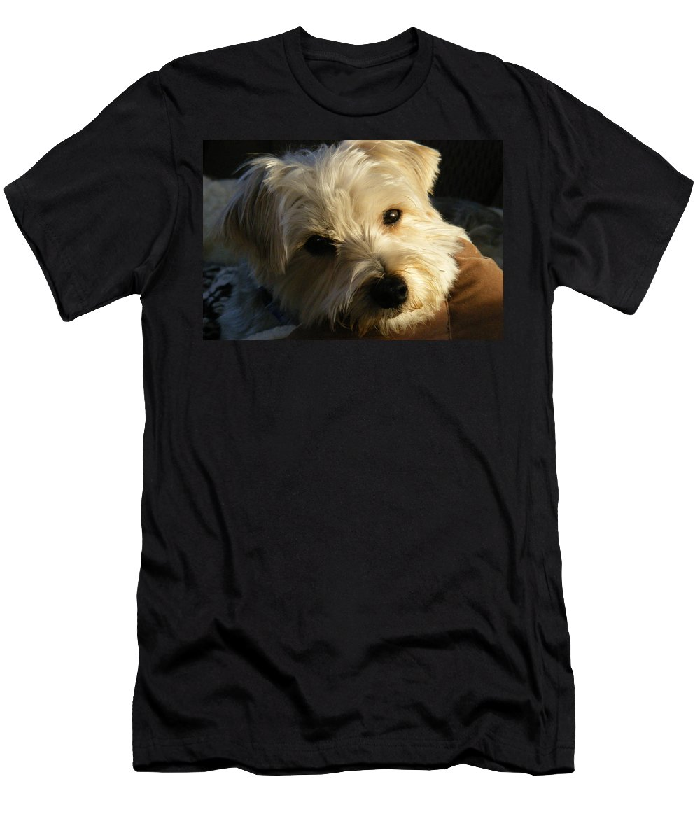 Dog Men's T-Shirt (Athletic Fit) featuring the photograph Charlie by Ed Smith