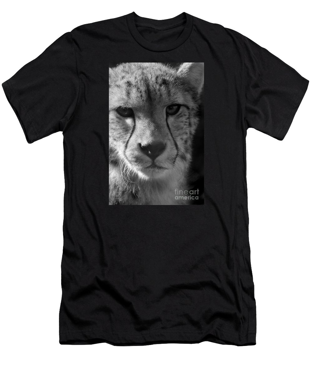 Cheetah Men's T-Shirt (Athletic Fit) featuring the photograph Cheetah Black And White by Karen Adams