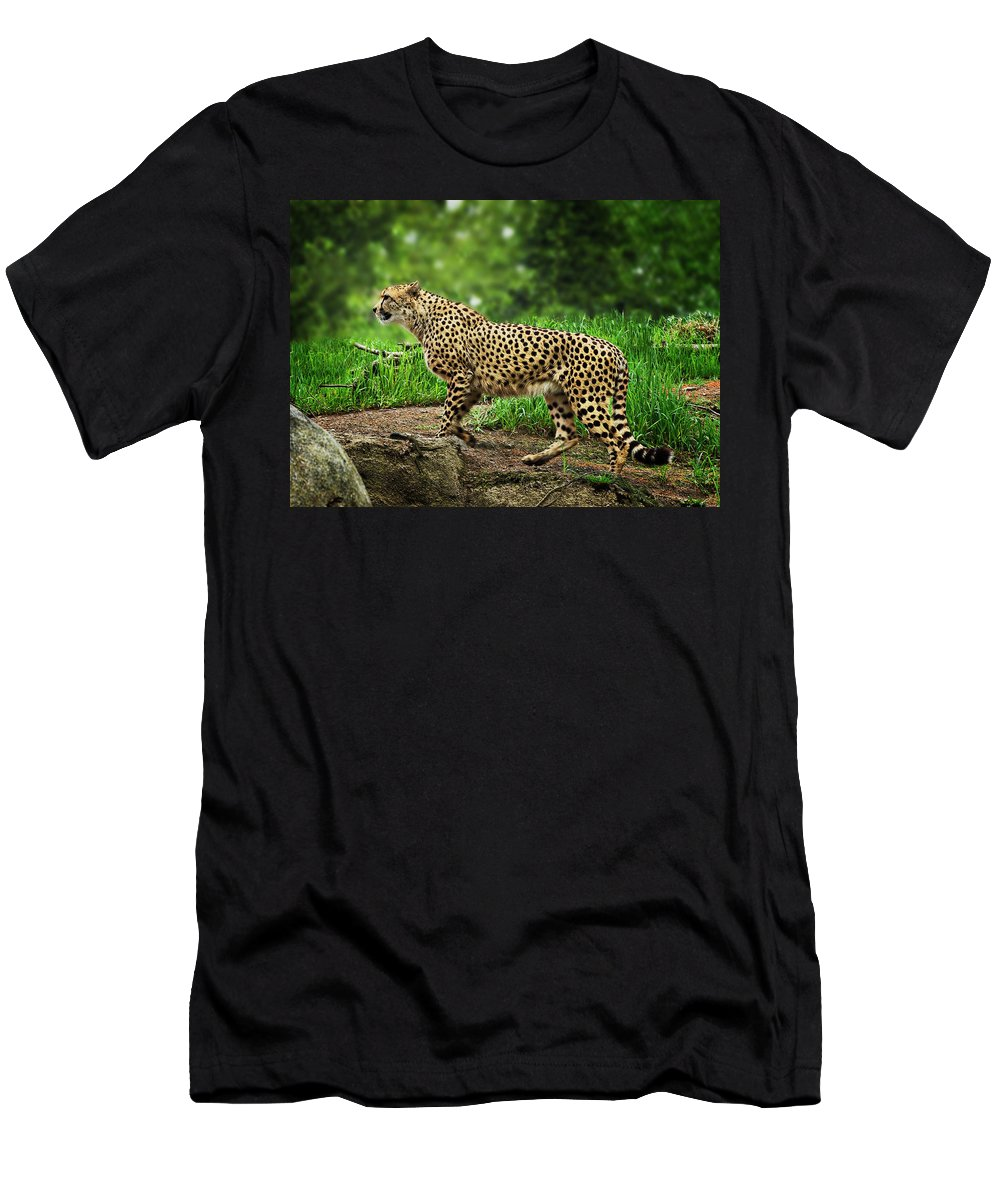Animal Men's T-Shirt (Athletic Fit) featuring the photograph Cheetah by John Christopher
