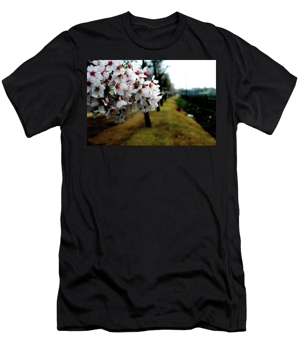 Cherry Men's T-Shirt (Athletic Fit) featuring the photograph Cherry Blossoms Trail by Michael Mathis