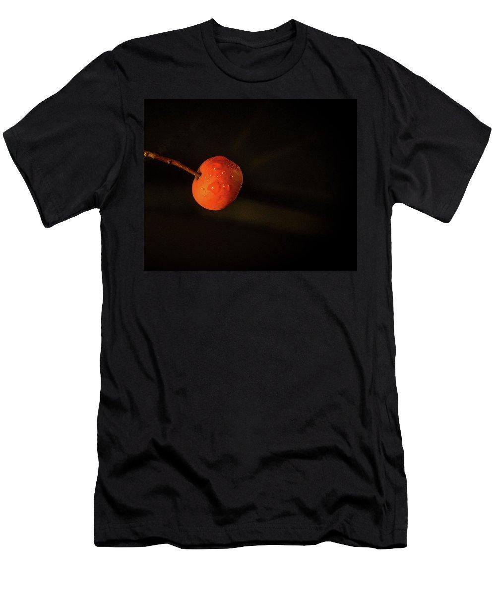 Cherry Men's T-Shirt (Athletic Fit) featuring the photograph Cherry Fruit Wtih Dew Drops by Douglas Barnett