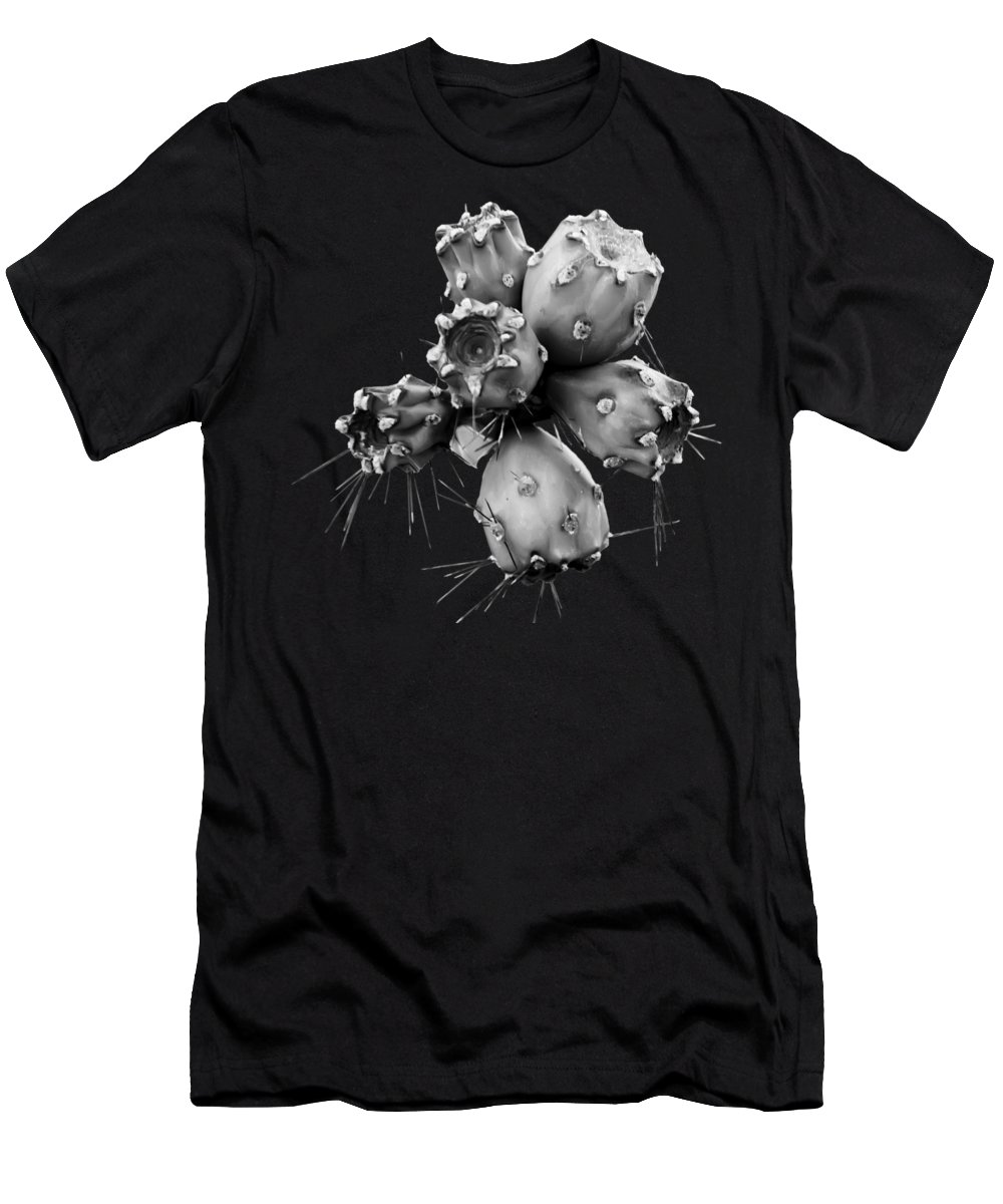 Floral Men's T-Shirt (Athletic Fit) featuring the photograph Cholla Fruit S49 by Mark Myhaver