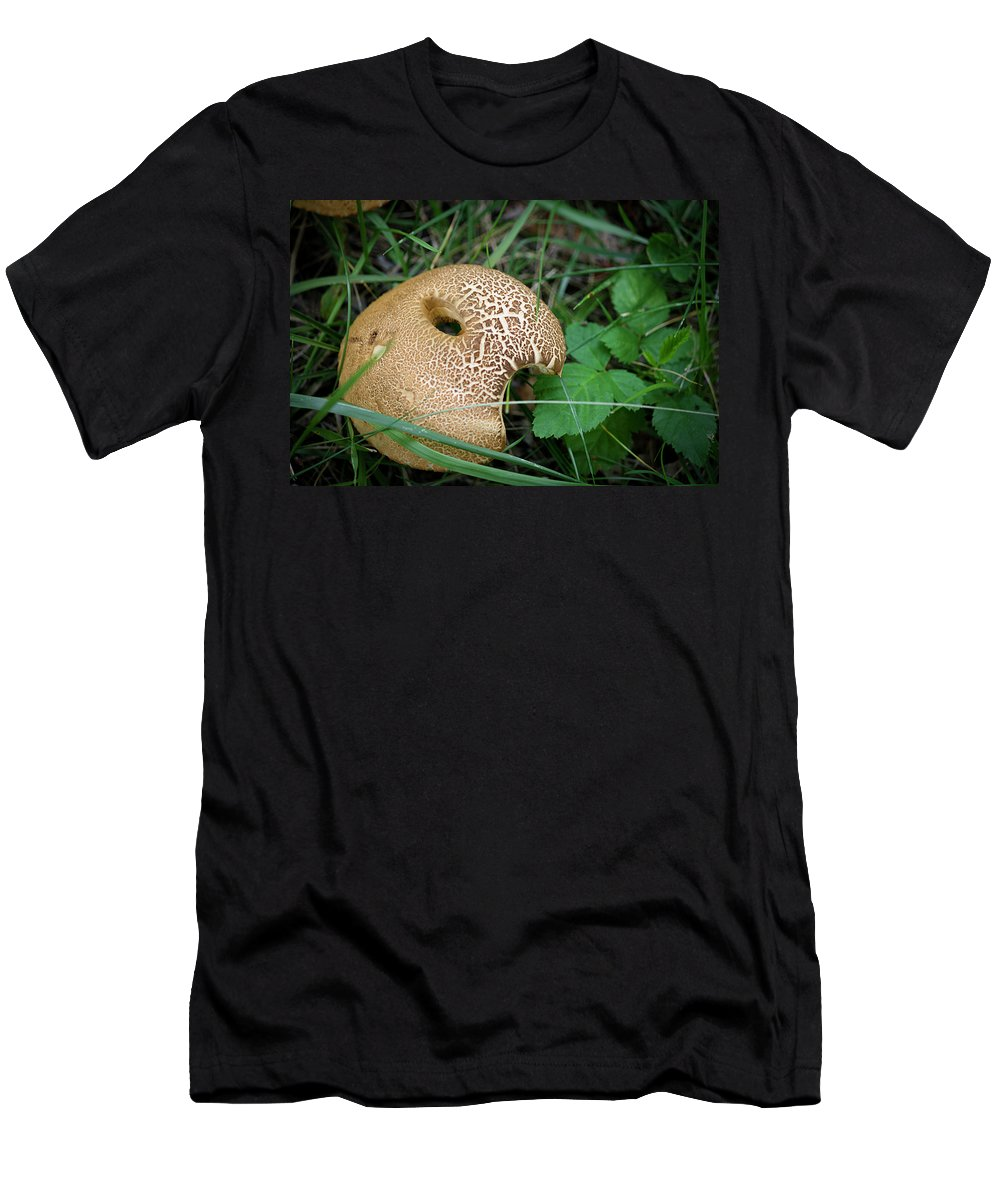 Fungus Men's T-Shirt (Athletic Fit) featuring the photograph Chomp by Teresa Mucha