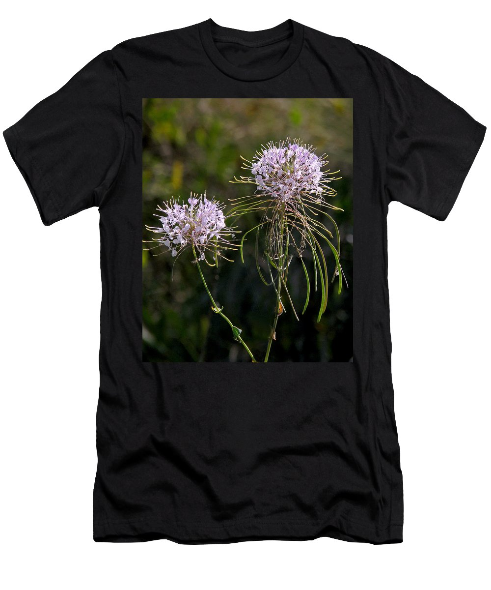 Nature Men's T-Shirt (Athletic Fit) featuring the photograph Clasping Warea by Peg Urban