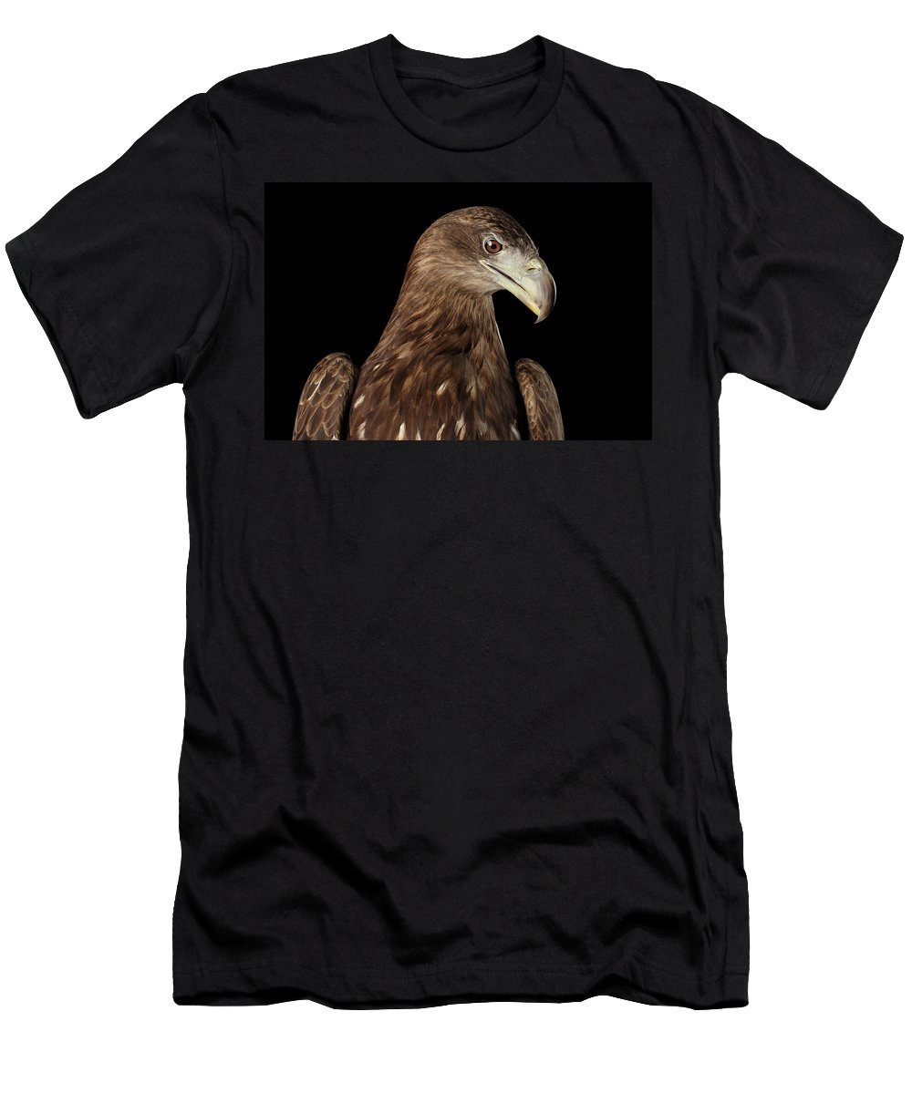 Eagle Men's T-Shirt (Athletic Fit) featuring the photograph Close-up White-tailed Eagle, Birds Of Prey Isolated On Black Bac by Sergey Taran