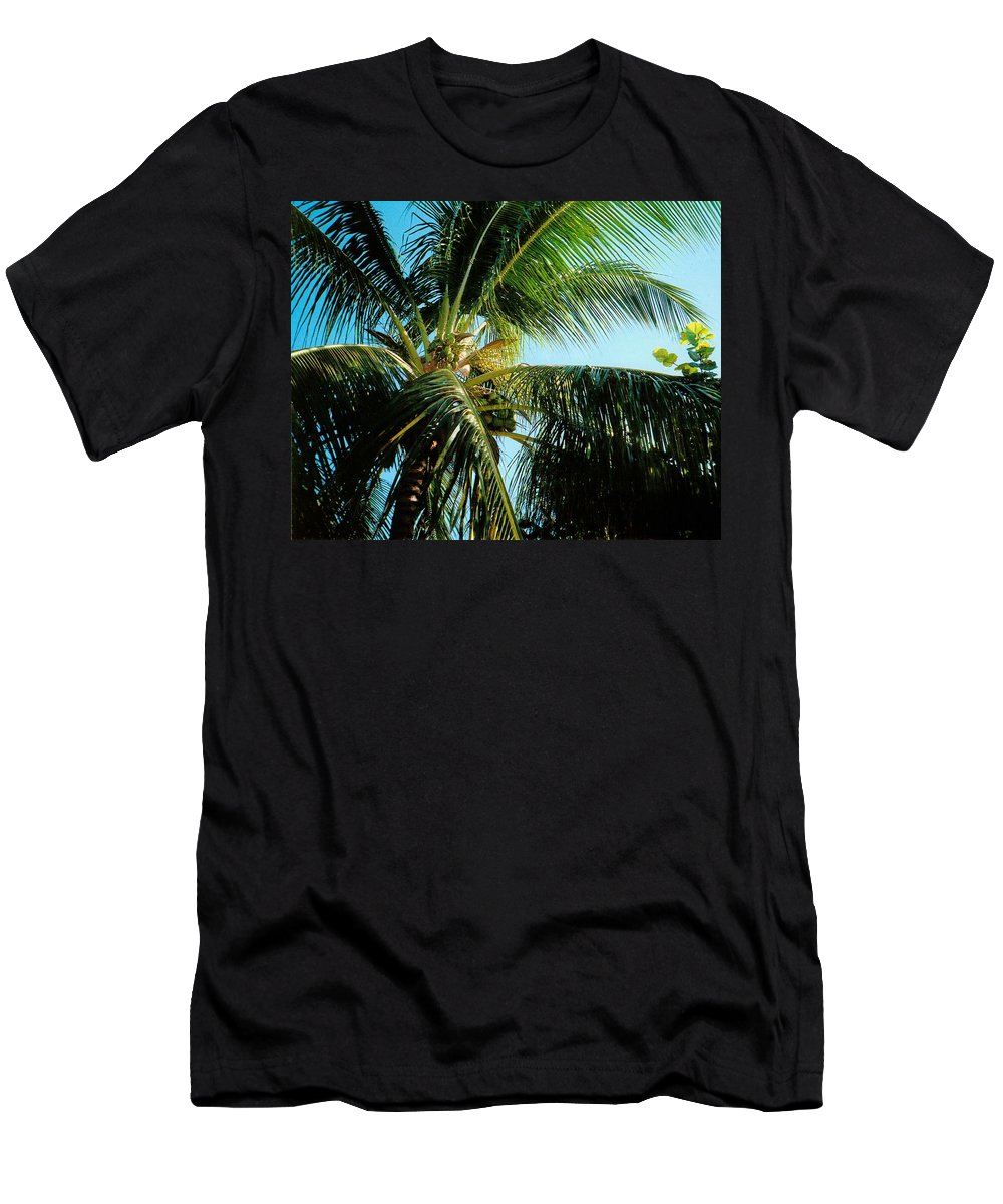 Jamaica T-Shirt featuring the photograph Coconut Tree by Debbie Levene