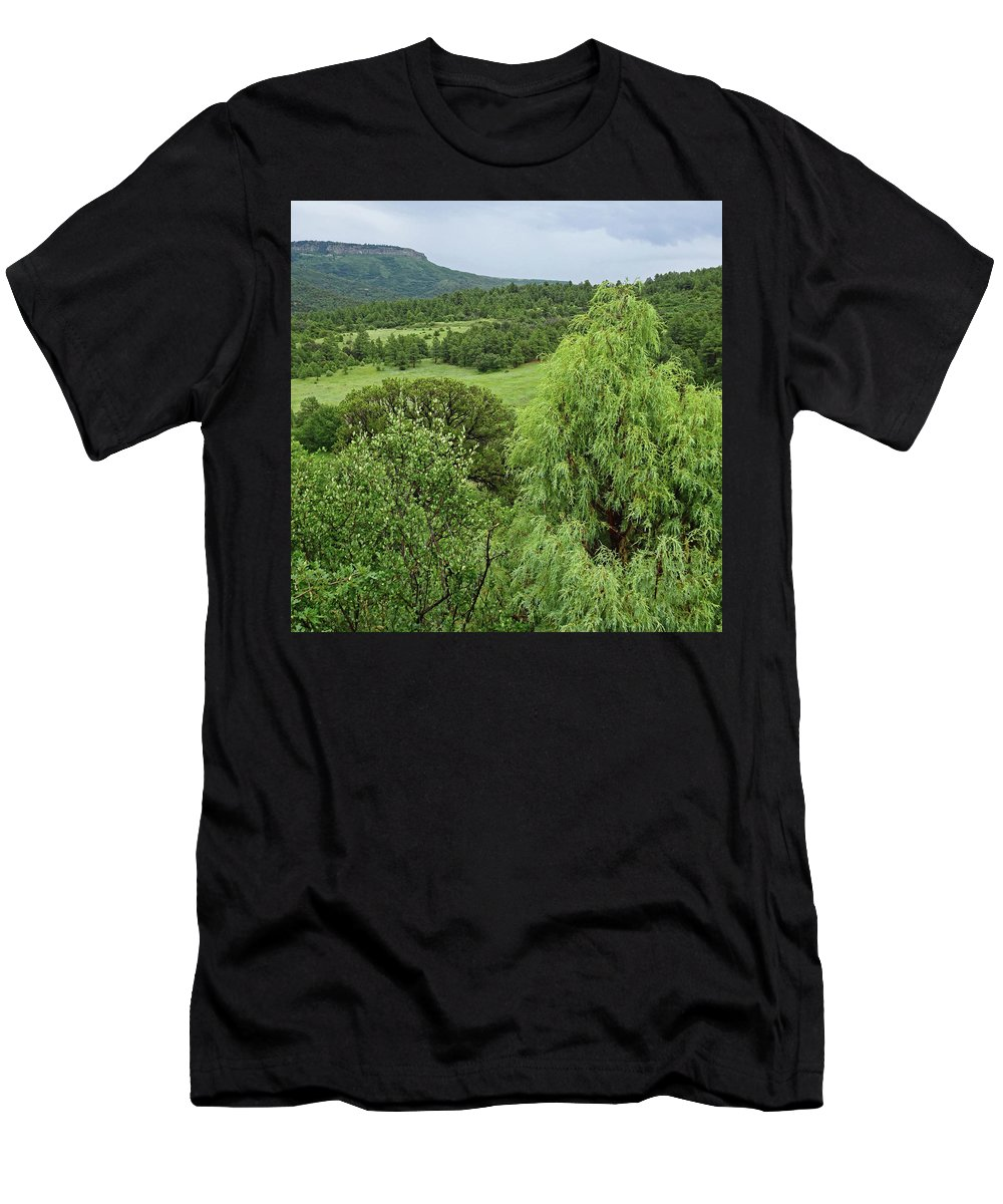 Colorado Men's T-Shirt (Athletic Fit) featuring the photograph Colorado Green by Dan Dixon