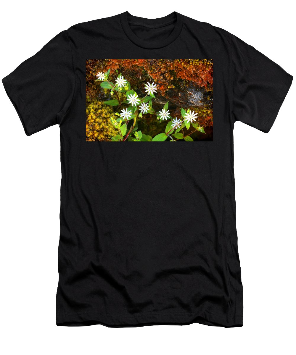 Chickweed Men's T-Shirt (Athletic Fit) featuring the photograph Colorful Chickweed by Shari Jardina