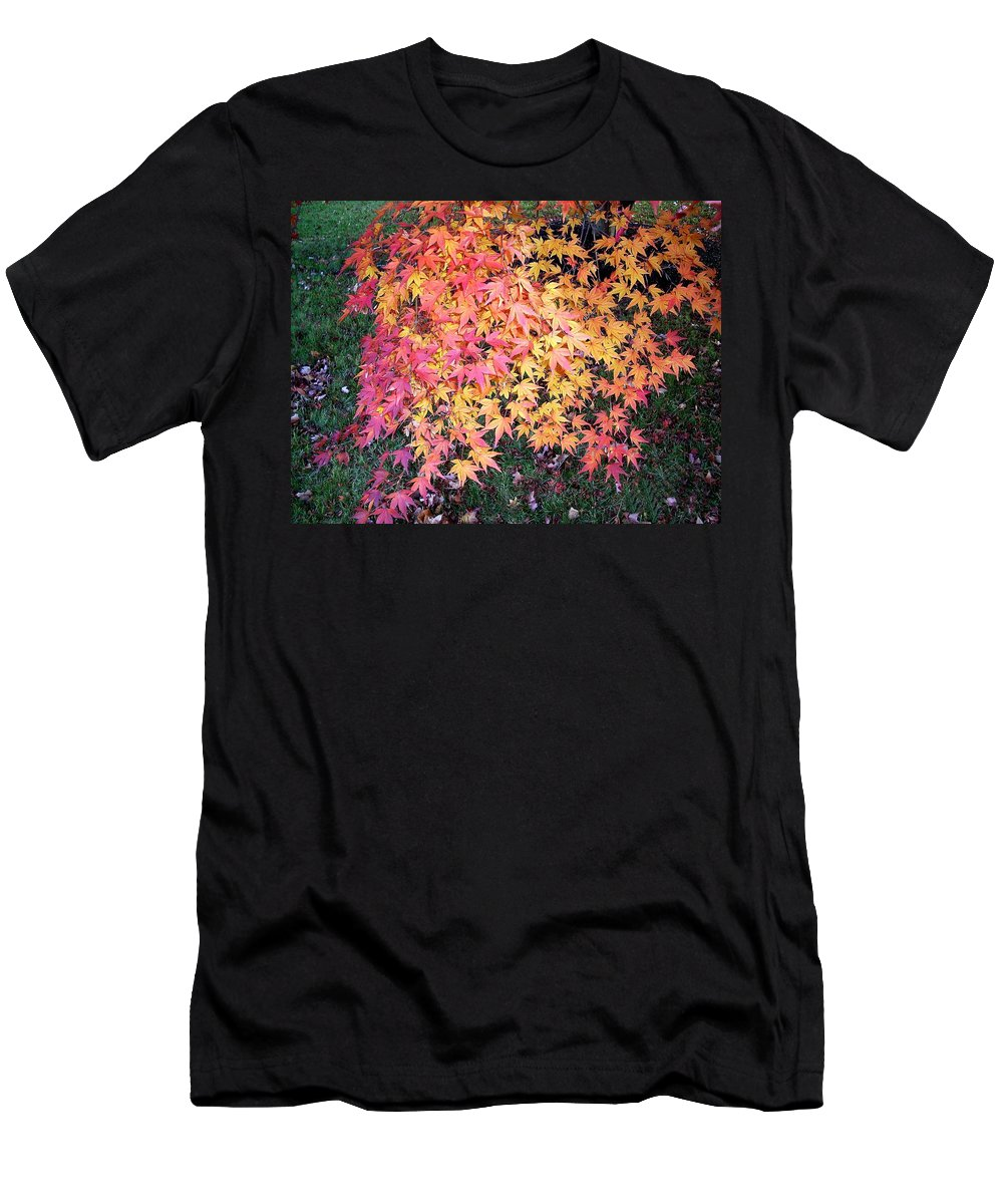 Fall Leaves Men's T-Shirt (Athletic Fit) featuring the photograph Colors Of Fall by Karin Dawn Kelshall- Best