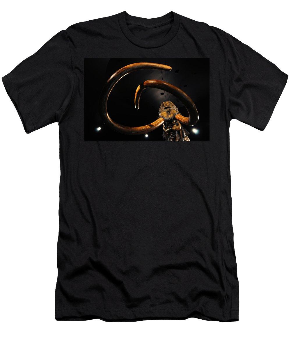 La Brea Tar Pits Men's T-Shirt (Athletic Fit) featuring the photograph Columbian Mammoth La Brea Tar Pits by Kyle Hanson