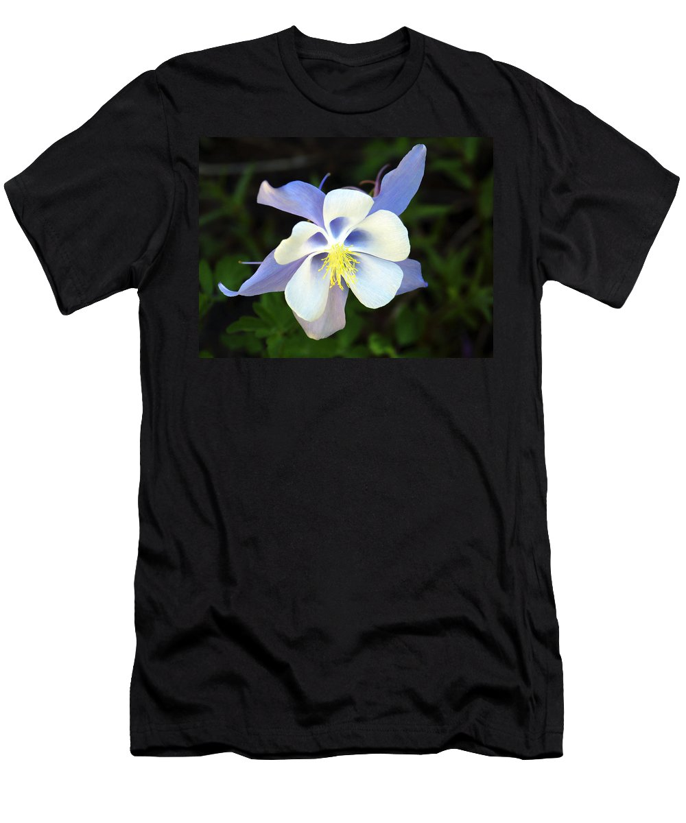 Columbine Men's T-Shirt (Athletic Fit) featuring the photograph Columbine Colorado State Flower by Marilyn Hunt