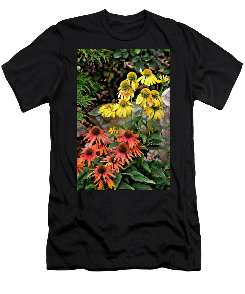 Garden Men's T-Shirt (Athletic Fit) featuring the photograph Cone Flowers by Gary Bengsch