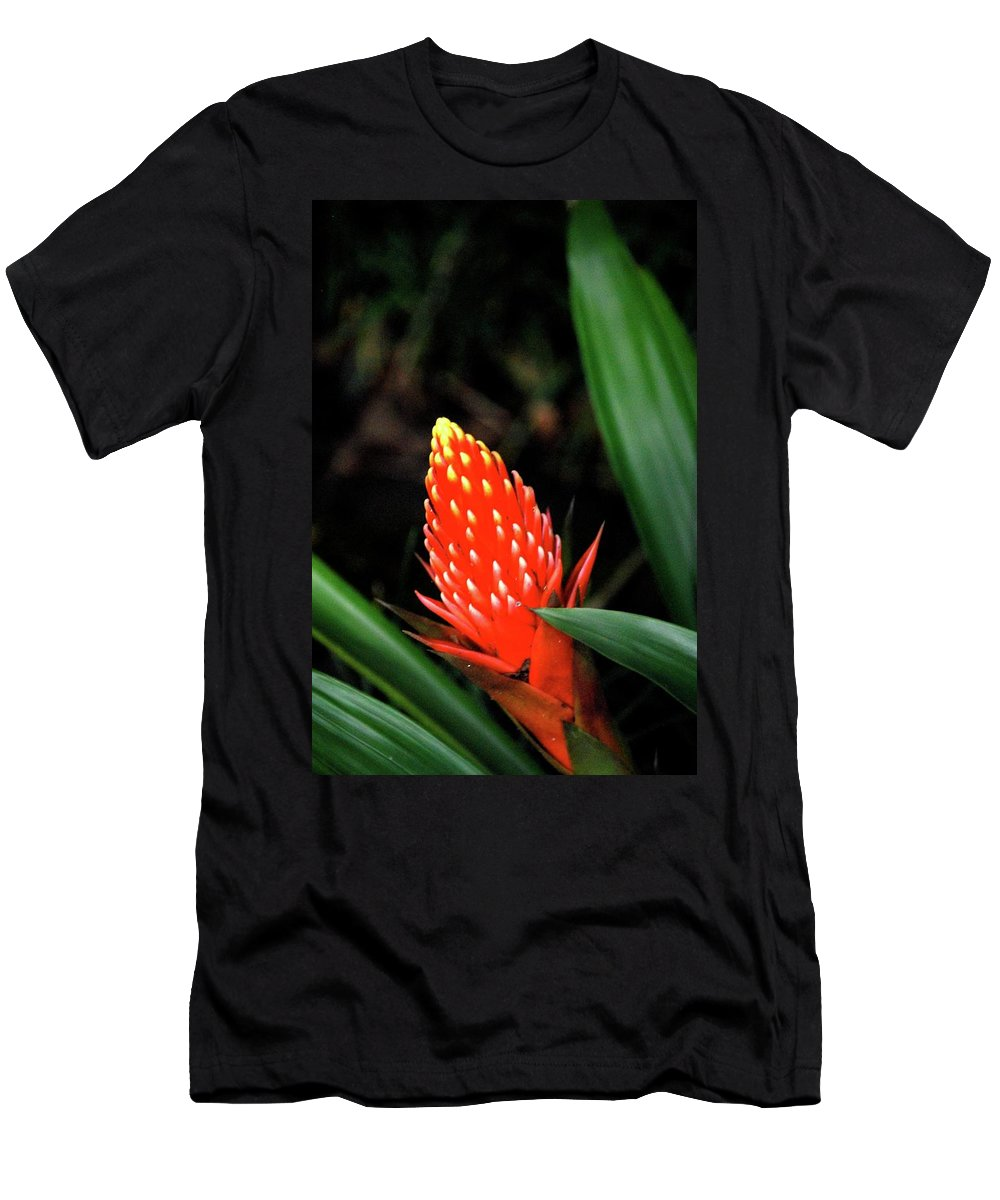 Red Flower Men's T-Shirt (Athletic Fit) featuring the photograph Cone Of Color by Debbie Karnes