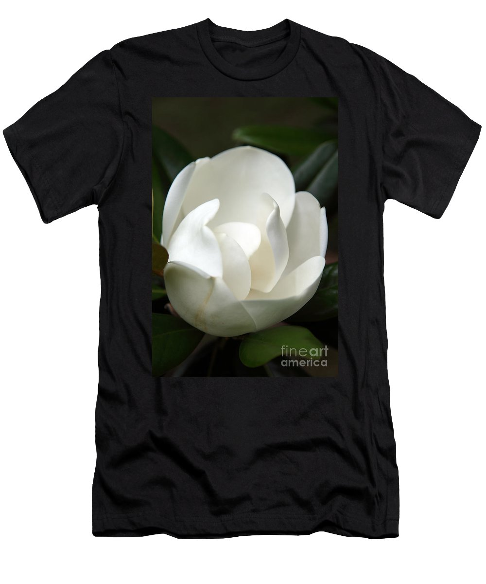Magnolia Men's T-Shirt (Athletic Fit) featuring the photograph Container by Amanda Barcon