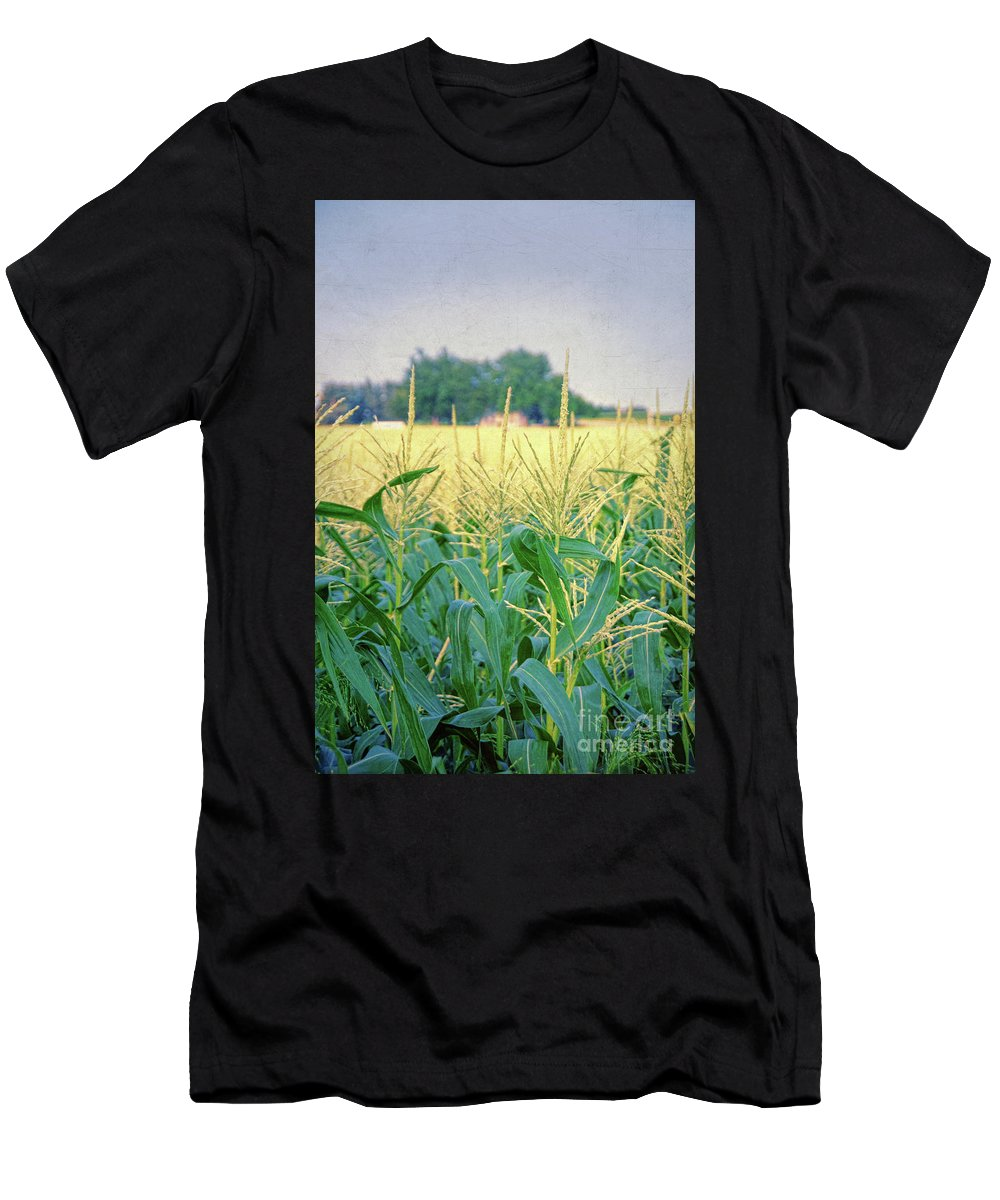Corn Field Men's T-Shirt (Athletic Fit) featuring the photograph Corn Field by Jill Battaglia