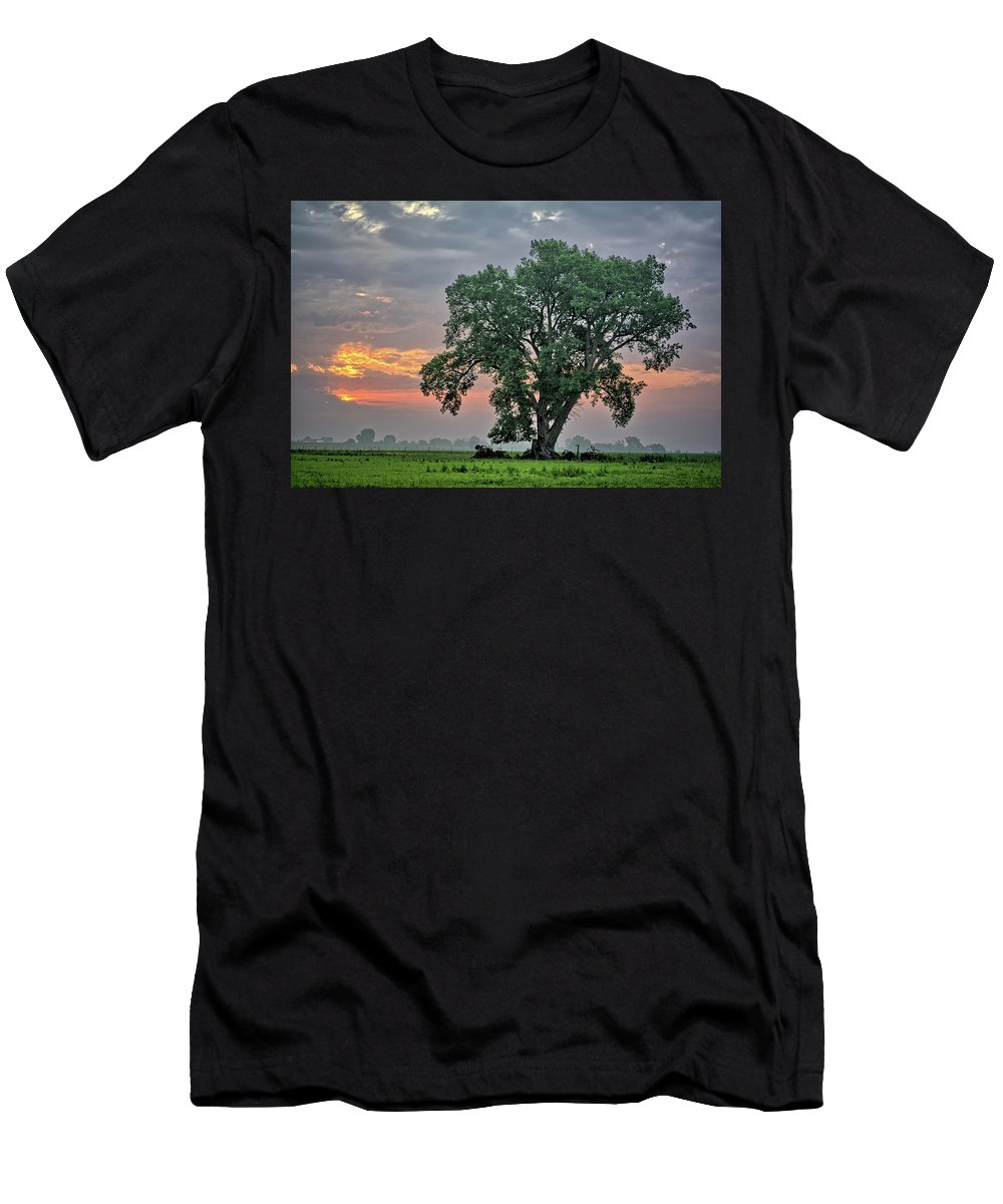 Cottonwood Men's T-Shirt (Athletic Fit) featuring the photograph Cottonwood Pasture 2 by Bonfire Photography
