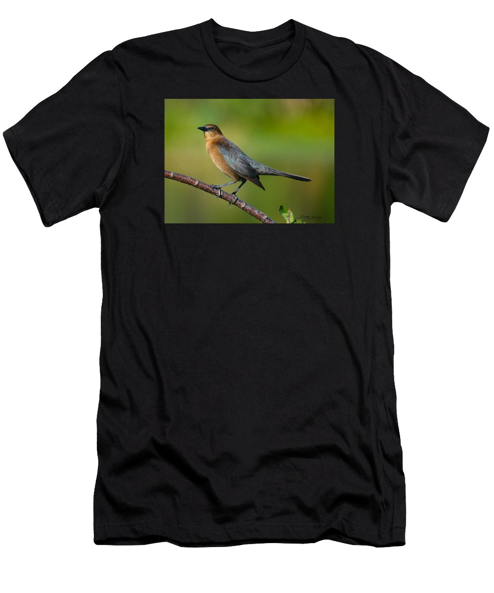 Cowbird Men's T-Shirt (Athletic Fit) featuring the pyrography Cowbird by Sally Sperry