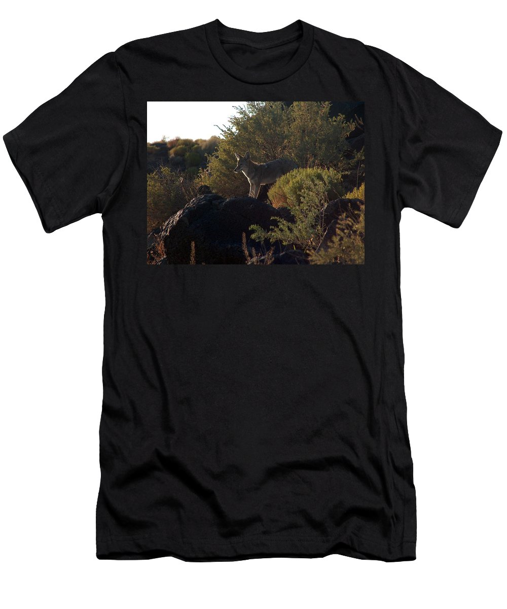 Coyote Men's T-Shirt (Athletic Fit) featuring the photograph Coyote At The Petrogyphs 2 by Tim McCarthy