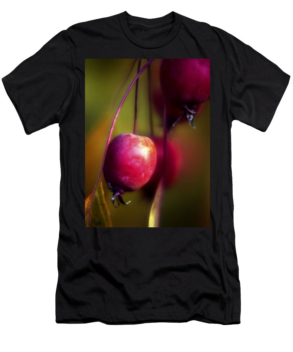 Macro T-Shirt featuring the photograph Crabapple by Lee Santa