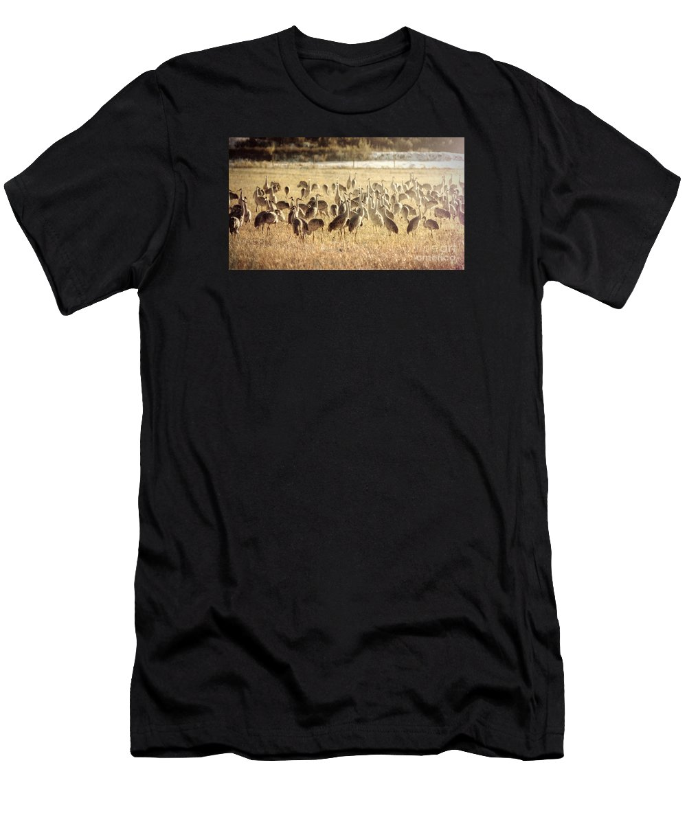 Outdoors Men's T-Shirt (Athletic Fit) featuring the photograph Cranes In The Morning Mist by Janice Pariza
