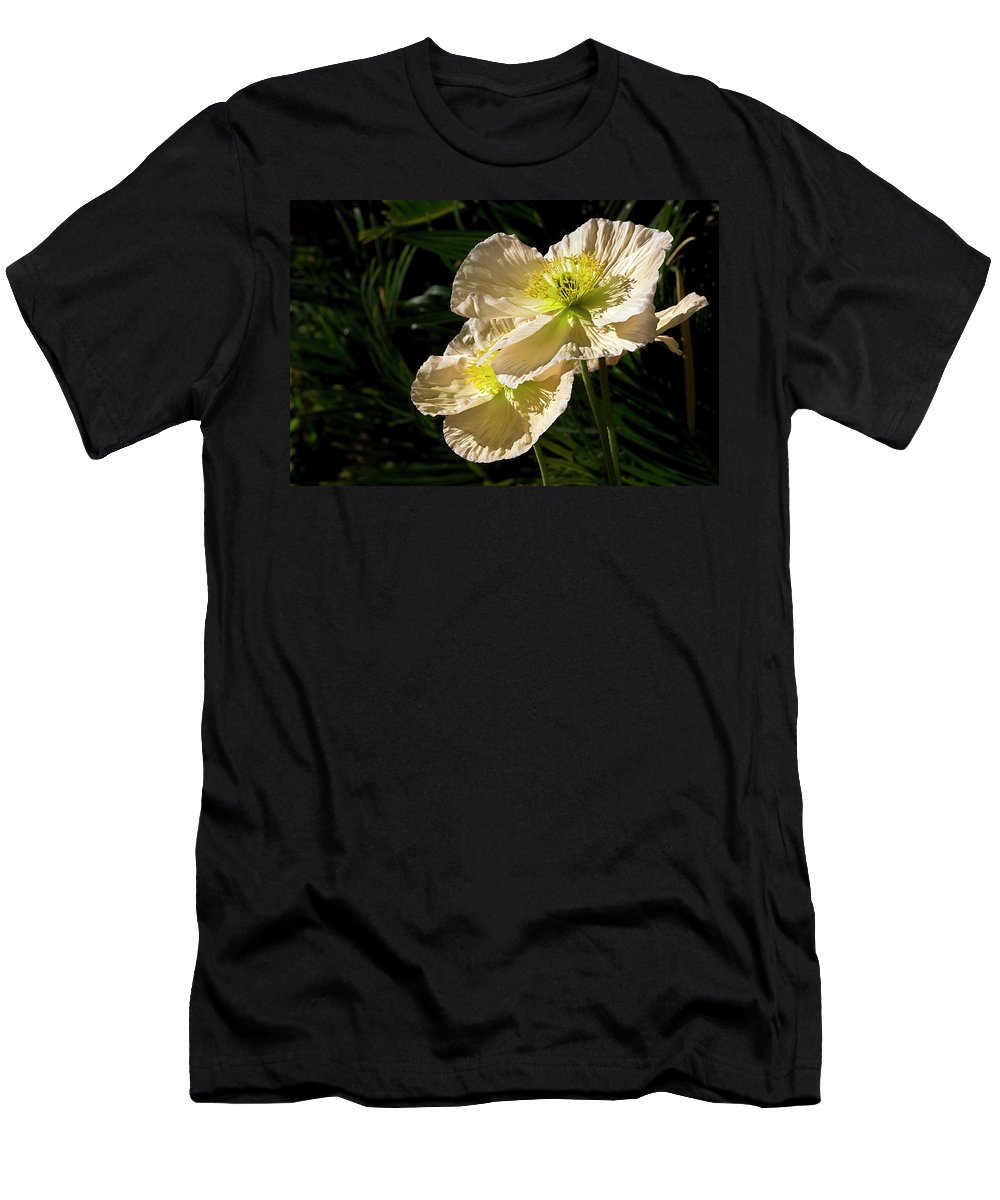 Flower Men's T-Shirt (Athletic Fit) featuring the photograph Creamy Poppies by Phyllis Denton