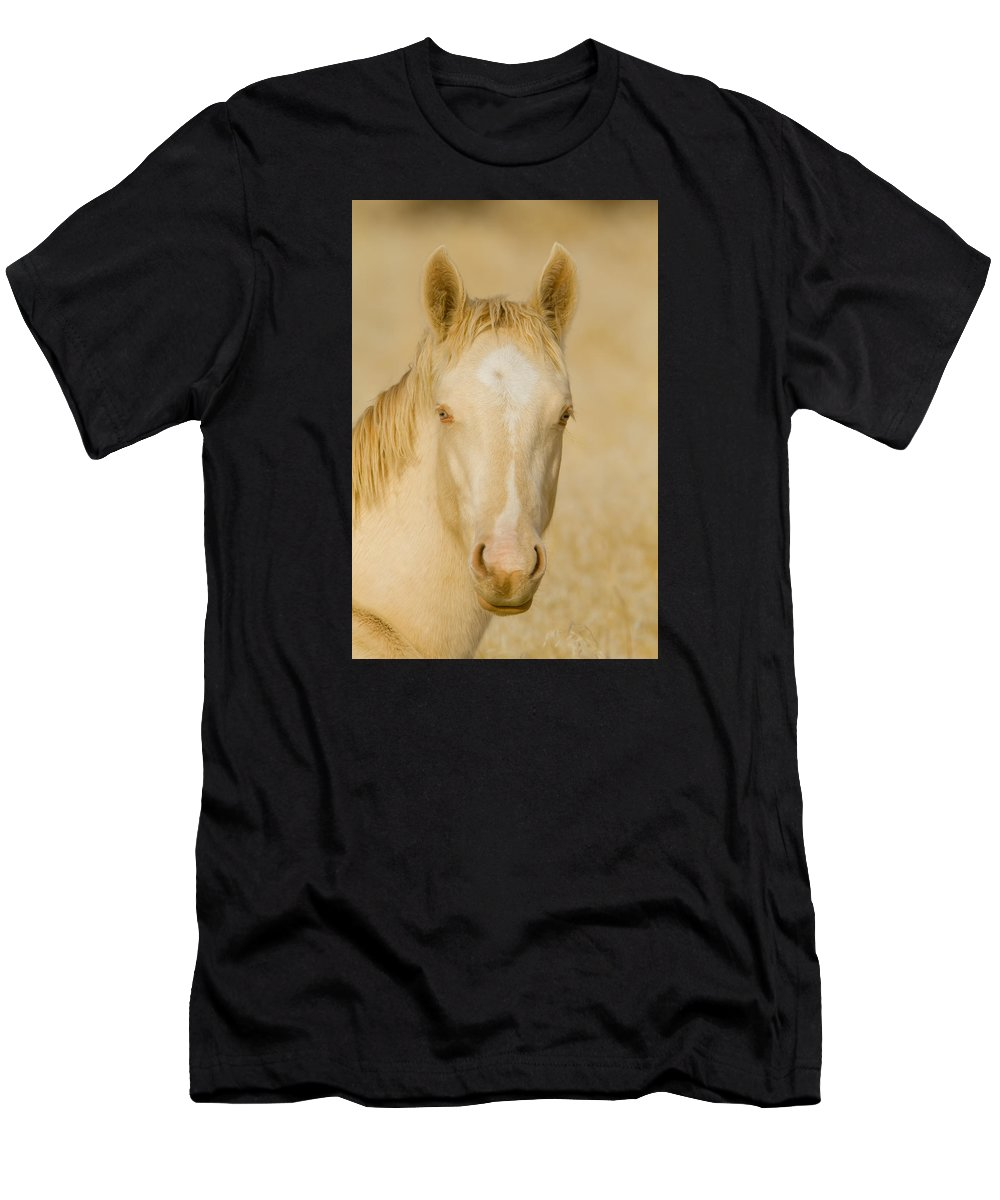 Wild Horse Men's T-Shirt (Athletic Fit) featuring the photograph Handsome Boy by Kent Keller
