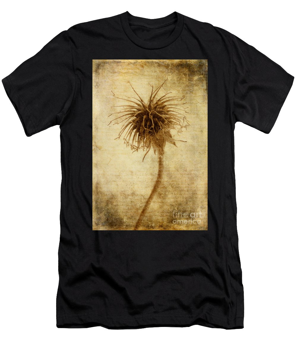 Seed Head Men's T-Shirt (Athletic Fit) featuring the photograph Crown Of Thorns by John Edwards
