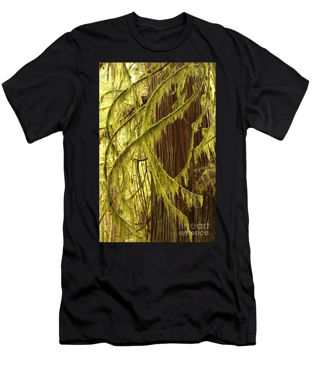 Natural Patterns Men's T-Shirt (Athletic Fit) featuring the photograph Curves In The Rainforest by Carol Groenen