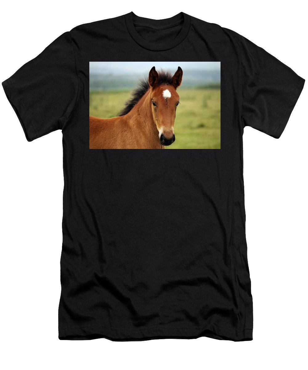 Horse Men's T-Shirt (Athletic Fit) featuring the photograph Cute Foal by Thomas Stracke