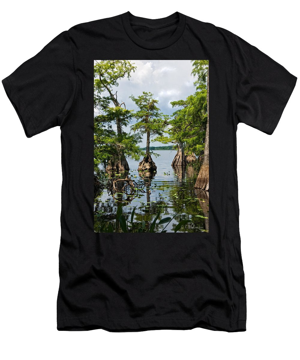 Trees Men's T-Shirt (Athletic Fit) featuring the photograph Cypress Reflections by Christopher Holmes