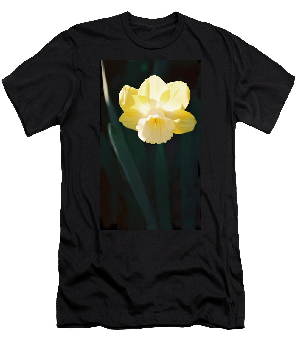 Daffodil Men's T-Shirt (Athletic Fit) featuring the photograph Daffodil by Steve Karol