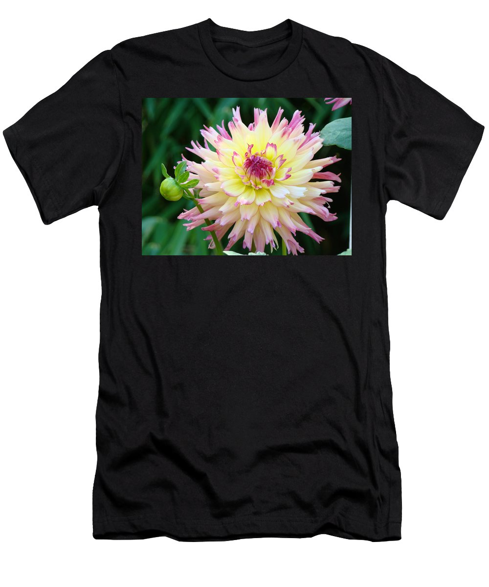 Flowers Men's T-Shirt (Athletic Fit) featuring the photograph Dahlia Floral Pink Yellow Flower Garden Baslee Troutman by Baslee Troutman