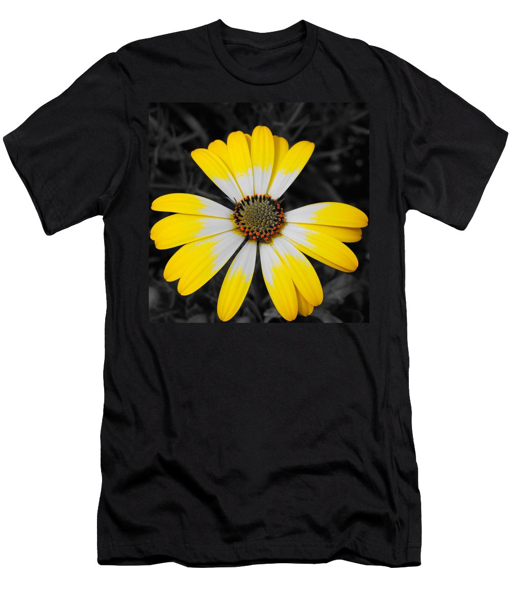 Daisy Men's T-Shirt (Athletic Fit) featuring the photograph Daisy Crown by Tim G Ross