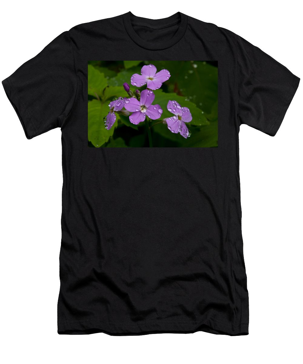 Wildflowers Men's T-Shirt (Athletic Fit) featuring the photograph Dame's Rocket Raindrops#1 by Irwin Barrett