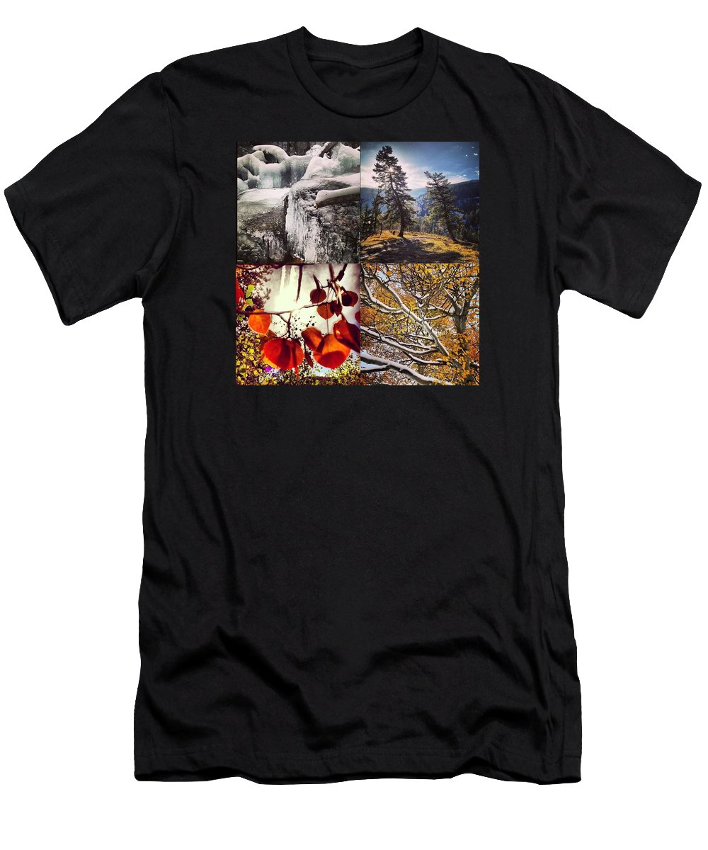 Nature Men's T-Shirt (Athletic Fit) featuring the photograph Dance Of The Trees by Bob Berwyn
