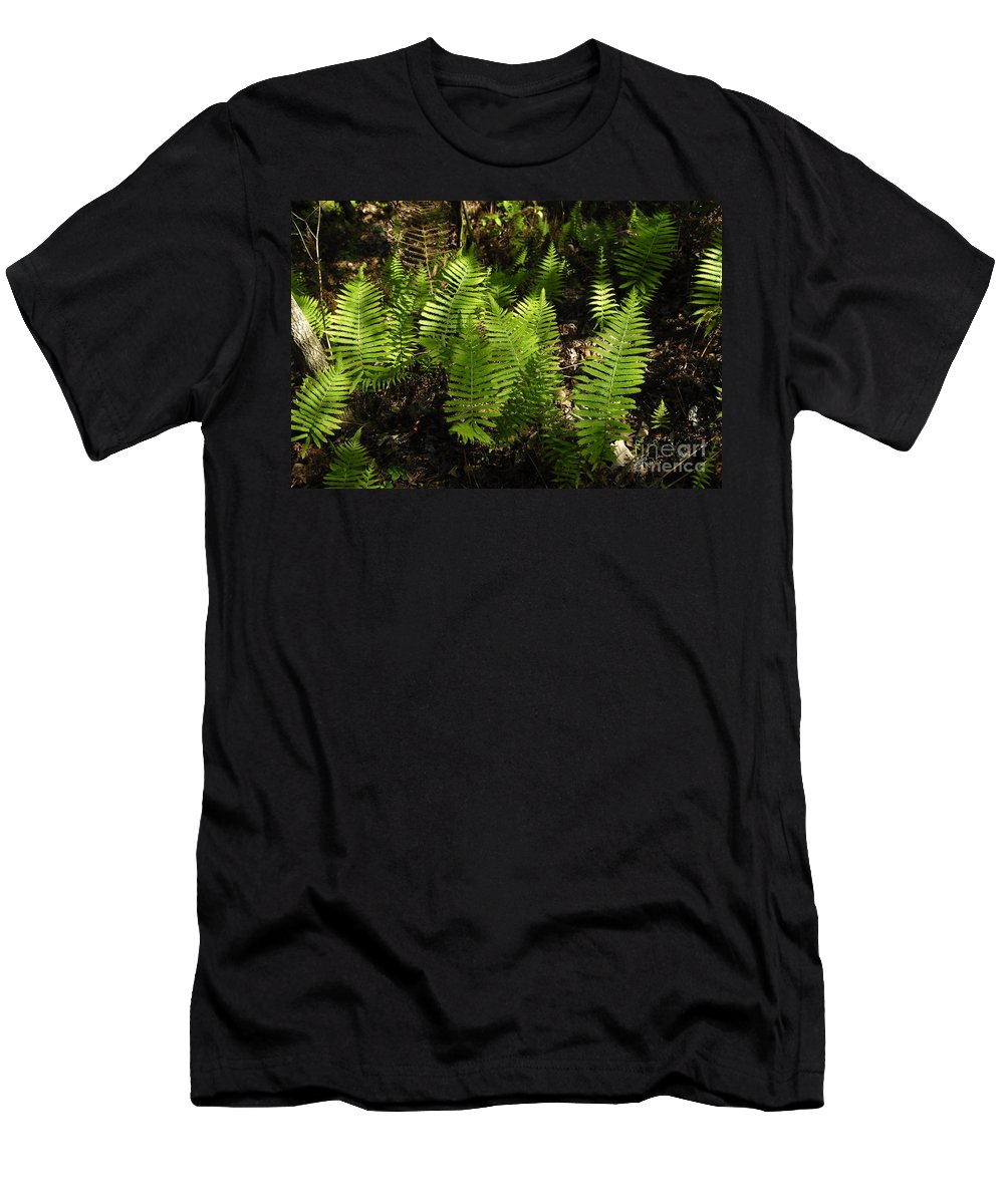 Ferns Men's T-Shirt (Athletic Fit) featuring the photograph Dancing Ferns by David Lee Thompson