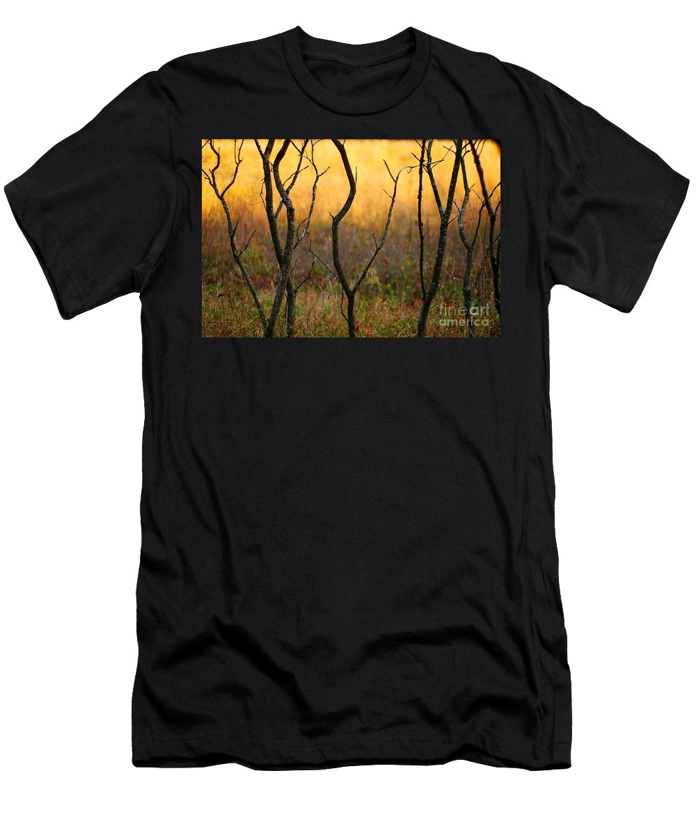 Dance Men's T-Shirt (Athletic Fit) featuring the photograph Dancing Trees by Randy Pollard