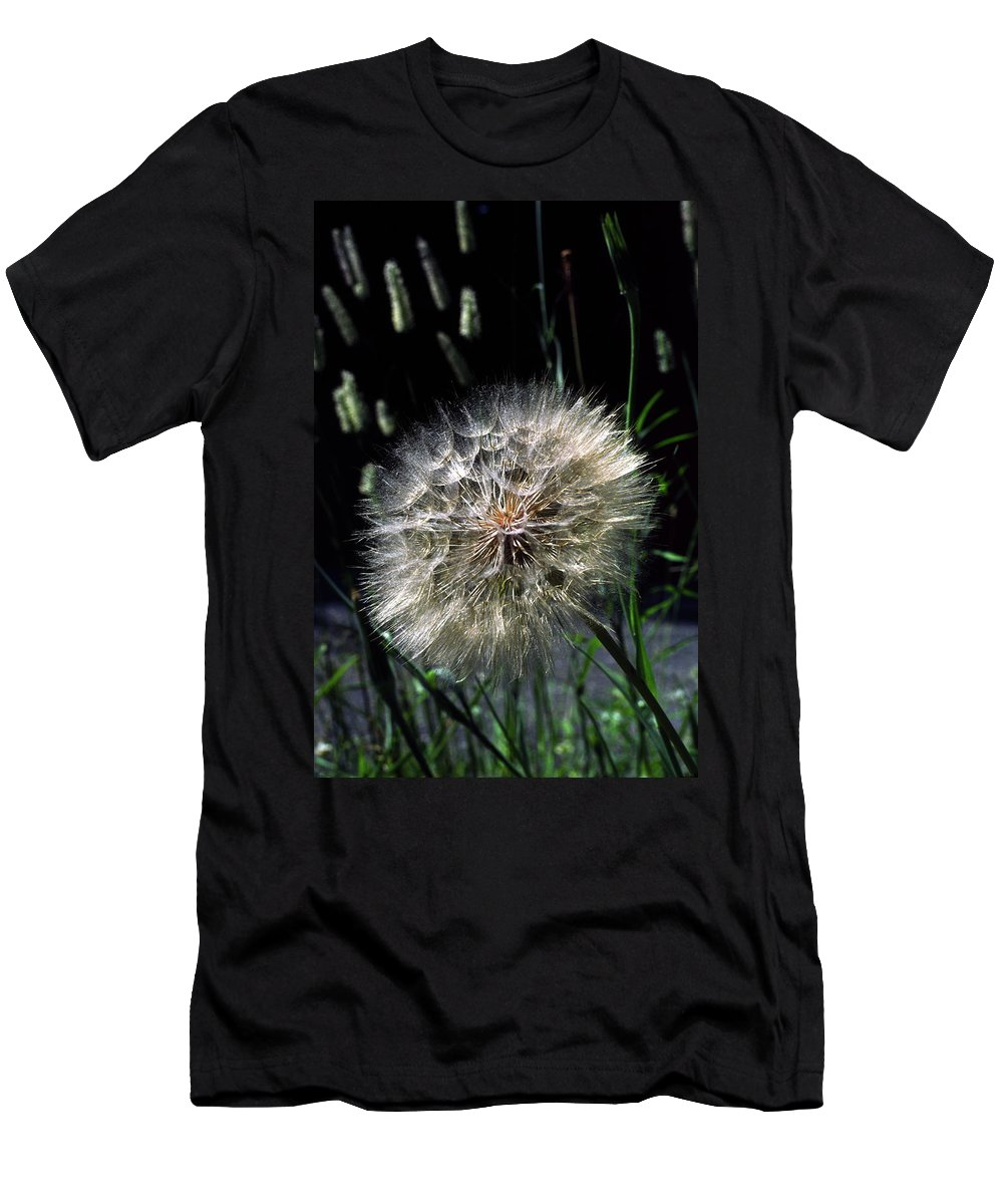 Seedball Of Common Dandelion Men's T-Shirt (Athletic Fit) featuring the photograph Dandelion Seedball by Sally Weigand