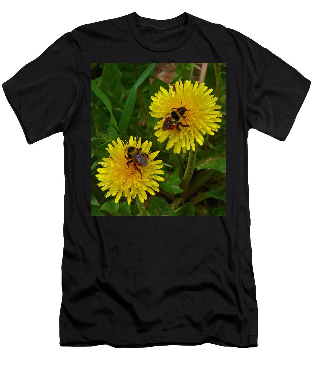 Dandelion Men's T-Shirt (Athletic Fit) featuring the photograph Dandelions And Bees by Heather Coen