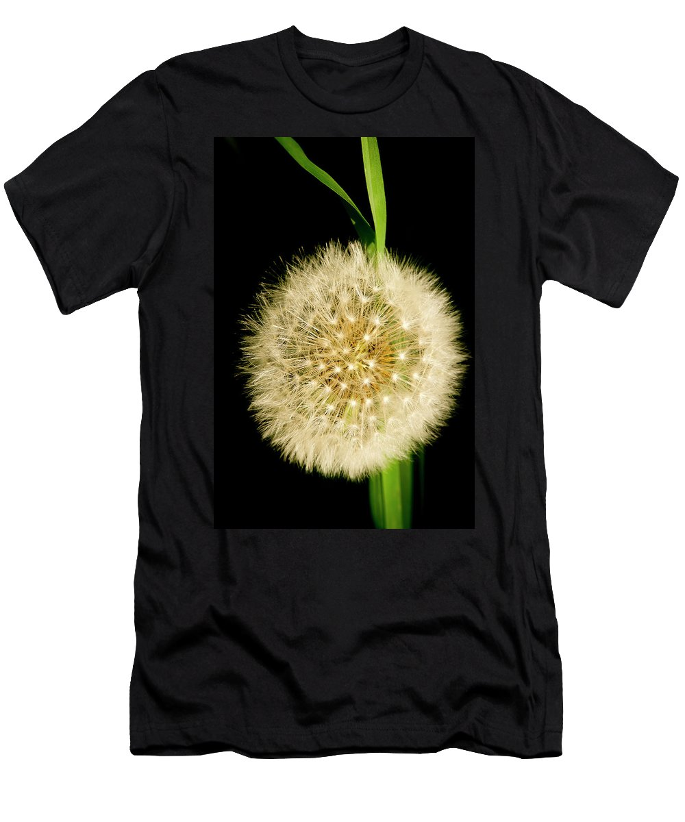 Floral Men's T-Shirt (Athletic Fit) featuring the photograph Dandelion's Seed Head. by Elena Perelman
