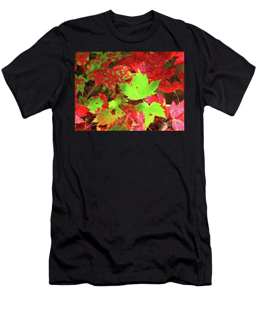 Autumn Men's T-Shirt (Athletic Fit) featuring the photograph Dappled Delight by Sheila Ping
