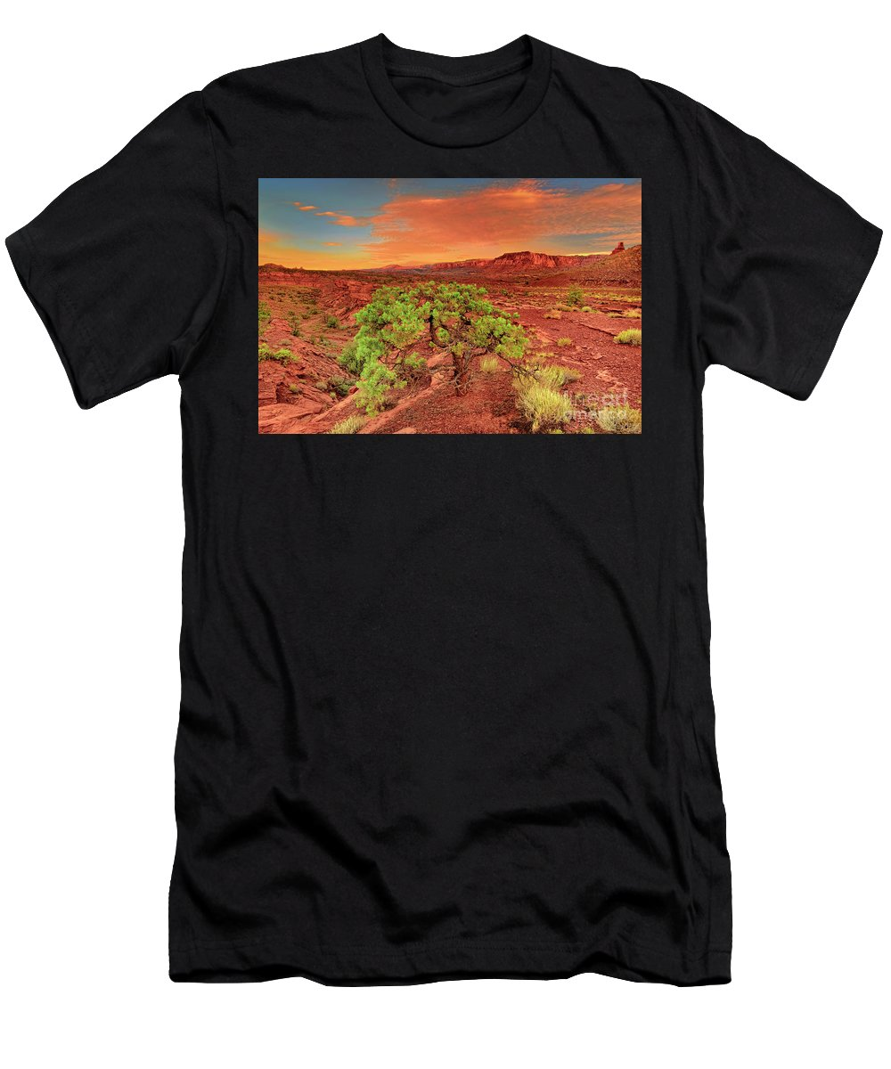 North America Men's T-Shirt (Athletic Fit) featuring the photograph Dawn Light Capitol Reef National Park Utah by Dave Welling