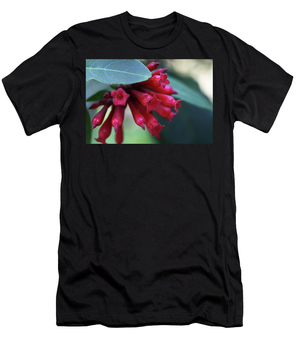 Jasmine Purple Flower Close-up Men's T-Shirt (Athletic Fit) featuring the photograph Day Blooming Jasime by Christina Geiger