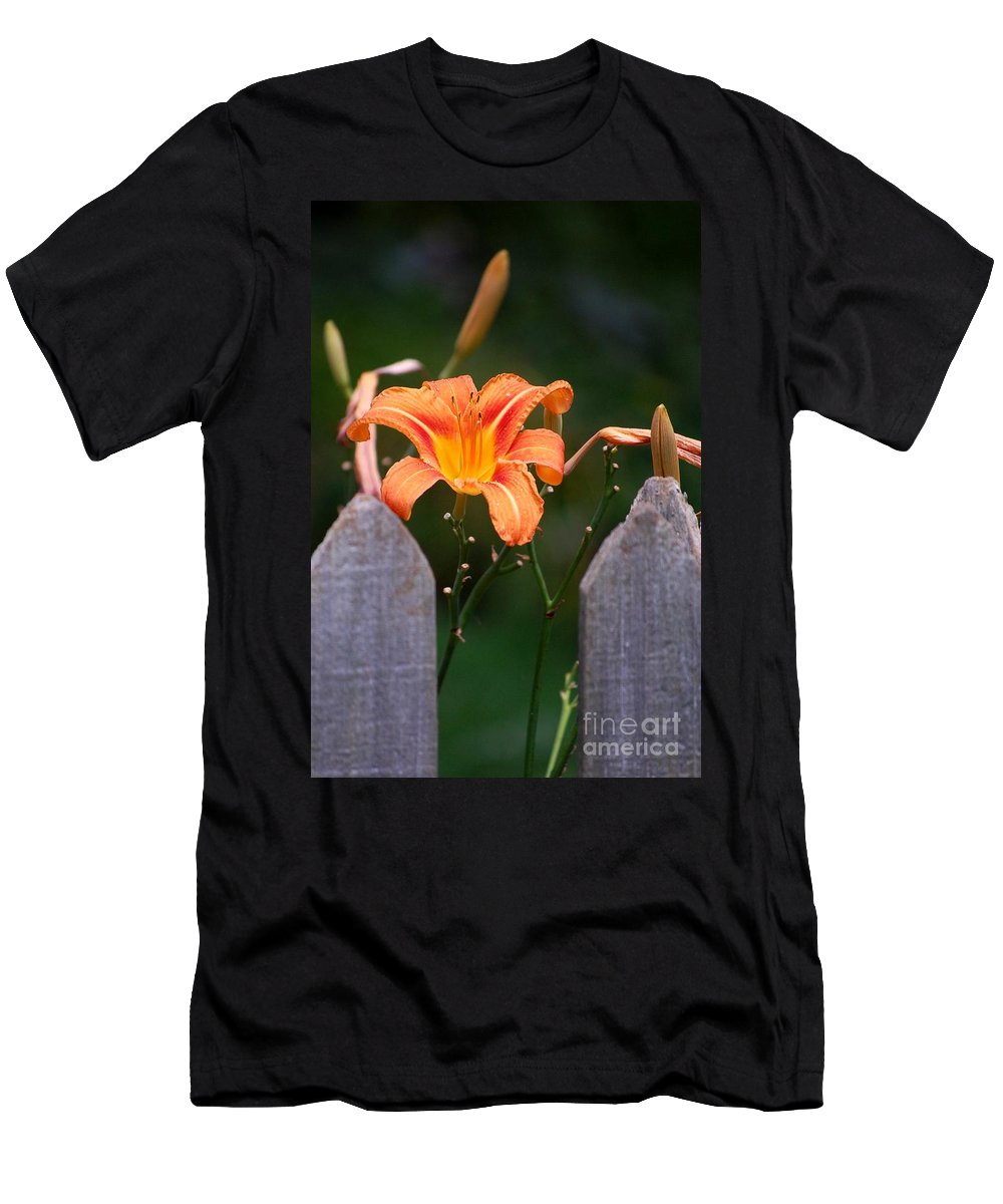 Digital Photograph Men's T-Shirt (Athletic Fit) featuring the photograph Day Lilly Fenced In by David Lane