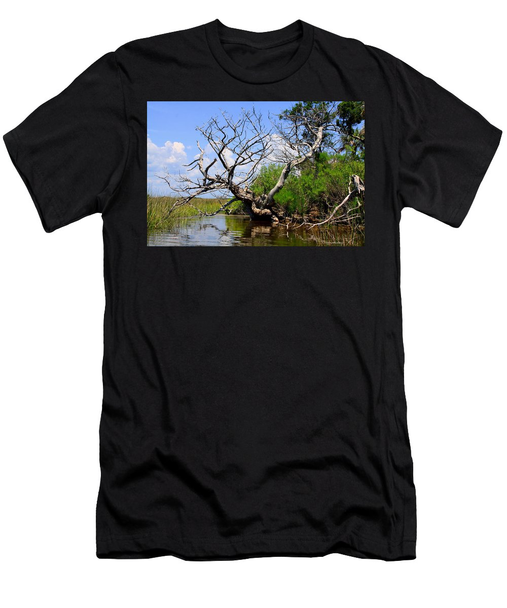 Dead Tree Men's T-Shirt (Athletic Fit) featuring the photograph Dead Cedar Tree In Waccasassa Preserve by Barbara Bowen